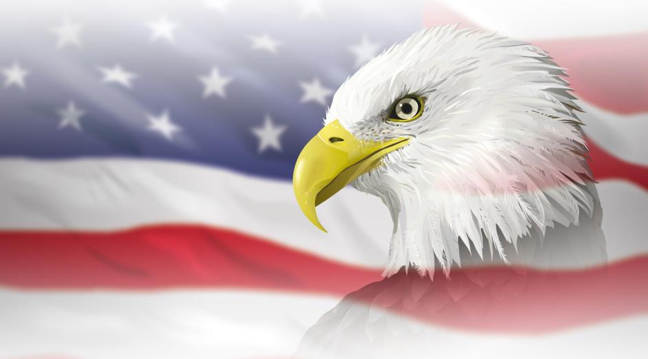 White Eagle Bild